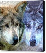 Wolves Canvas Print by Tom Romeo