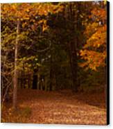 Wonderful Fall Colors Canvas Print by Robert  Torkomian