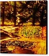 Wood At Night Canvas Print by Marie Bulger