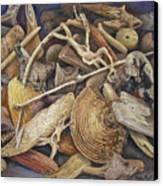 Wood Creatures Canvas Print