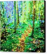 Wooded Trail Canvas Print