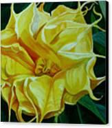 Yellow Blast Canvas Print