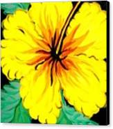 Yellow Hibiscus Canvas Print