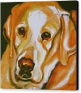 Yellow Lab Amazing Grace Canvas Print by Susan A Becker
