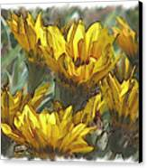 Yellow  Canvas Print by Laurianne Nash