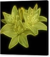 Yellow Lilies On Black Canvas Print by Sandy Keeton