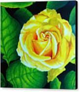 Yellow Canvas Print by Ramneek Narang