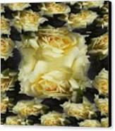 Yellow Roses 2 Canvas Print