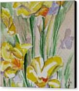 Yellow Wild Flowers I Canvas Print