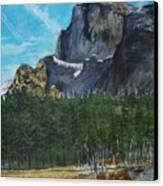 Yosemite Political Statement Canvas Print