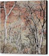 Zion At Kayenta Trail Canvas Print by Viktor Savchenko