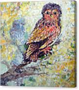 Acrylic Painting Fuzzy Yellow Owl  Canvas Print