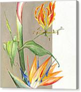 Bird Of Paradise 09 Elena Yakubovich Canvas Print