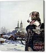 Borzoi - Russian Wolfhound Art Canvas Print Canvas Print