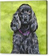 Budwood The Black Cocker Spaniel Canvas Print