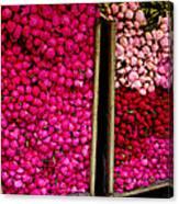 Bushels Of Parisian Peonies Canvas Print