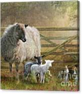 By The Gate Canvas Print