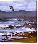 California Highway 1  Canvas Print