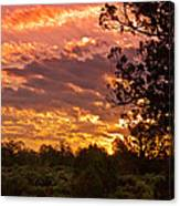 Canyon Dechelly Sunset In Copper And Gold Canvas Print