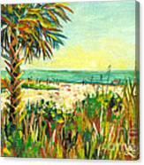 Crescent Beach Palm Canvas Print