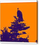 Eagle Scout At Sunset Canvas Print