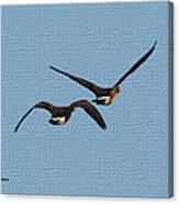 Fleeing Geese Canvas Print