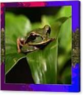 Frog Hideous Green Amphibian Canvas Print