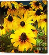 Golden Jerusalem Floral Canvas Print