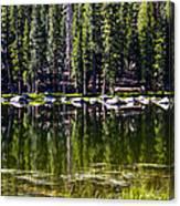 Granite Reflections  Canvas Print