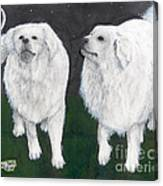Great Pyrenees Dogs Night Sky Cathy Peek Animal Art Canvas Print
