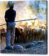 Herder Going Home In Mexico Canvas Print