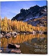 Larches Line Leprechaun Lake Canvas Print