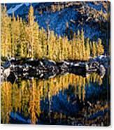 Leprechaun Lake Larches Canvas Print
