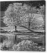Long Pond On Mount Desert Island In Maine Canvas Print