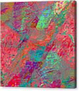 Magenta Poppy Rock Canvas Print