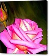 Painted Pink Rose Canvas Print