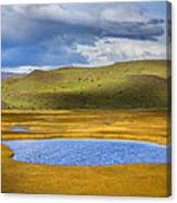 Patagonian Lakes Canvas Print