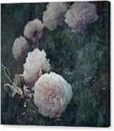 Perennial Gardens - Fall #04 Canvas Print