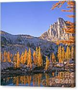 Prusik Peak Behind Larch Trees Canvas Print