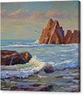 Rocks West Coast Canvas Print