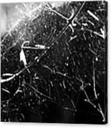 Spidernet Canvas Print