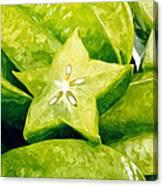 Star Fruit Carambola Canvas Print