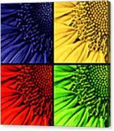 Sunflower Medley Canvas Print