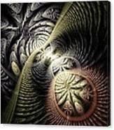 Trilobite Trail Canvas Print