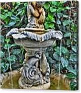 002 Fountain Buffalo Botanical Gardens Series Canvas Print