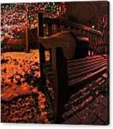 003 Christmas Light Show At Roswell Series Canvas Print