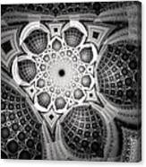 0062 Canvas Print