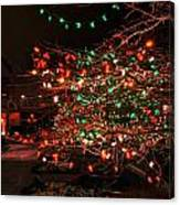 008 Christmas Light Show At Roswell Series Canvas Print