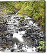 0106 Columbia River Gorge Near Bridal Veil Falls Canvas Print
