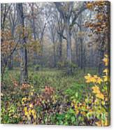 0133 Misty Meadow 2 Canvas Print